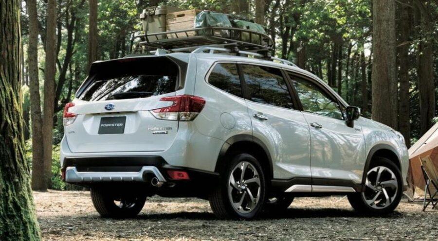 Subaru Forester: вид сзади